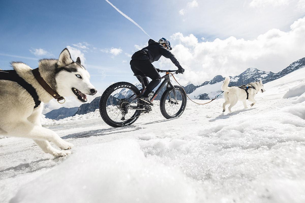 5 consejos básicos para practicar MTB con nieve