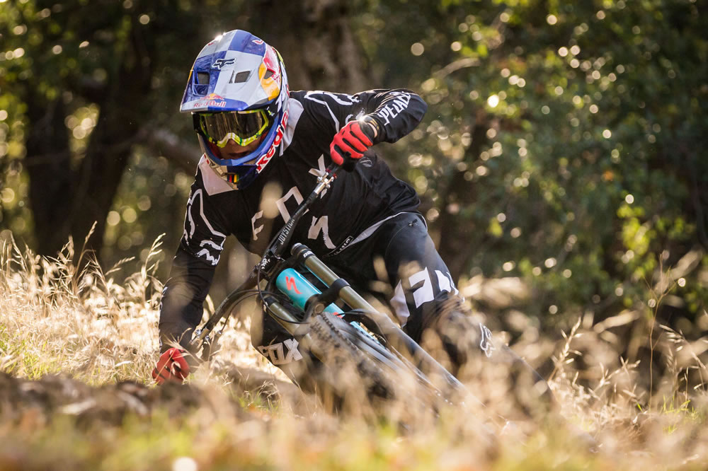 Equipo Specialized Gravity DH 2017