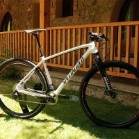 Specialized HT Expert Carbon Evo