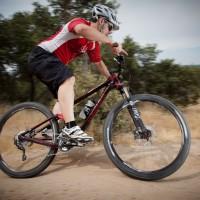 Trek Fuel EX 29'
