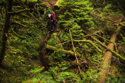 60 minutos de MTB: Freeride o Enduro