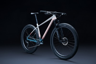 Nuevo cuadro con decoración exclusiva Specialized Chisel LTD Disrup the Decay